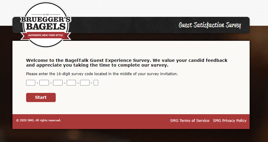 Bruegger's Survey