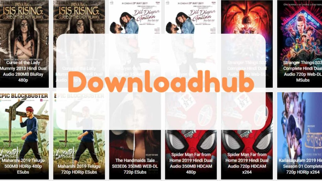 downloadhub 300